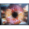 Продам видеокарту Asus 4850 1Gb DDR3